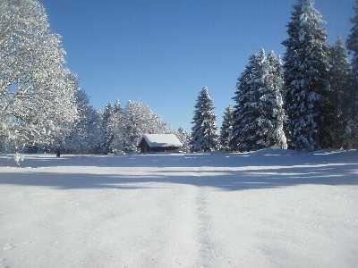 Notre Refuge de la Bise de Cortébert en ce premier janvier 2009